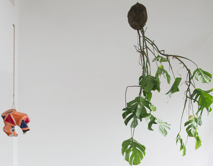 Luana Perilli,   Hanging Lava,   2014,   glazed ceramics,   kokedama monstera,   macramè,   various dimensions,   photo by Giorgio Benni,   courtesy The Gallery Apart,   Rome