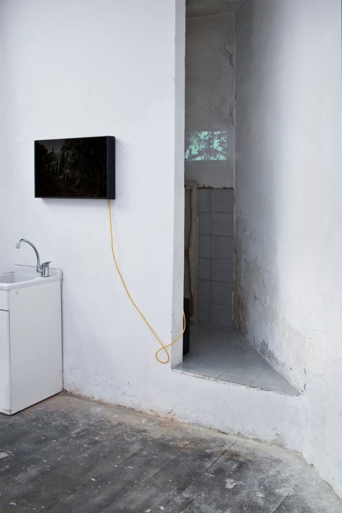 Silvia Mariotti, Tempo neutro, 2014. Dark-box 43 x 64 cm  - Patrizia Emma Scialpi, Neith, 2015.Video, 05'32""