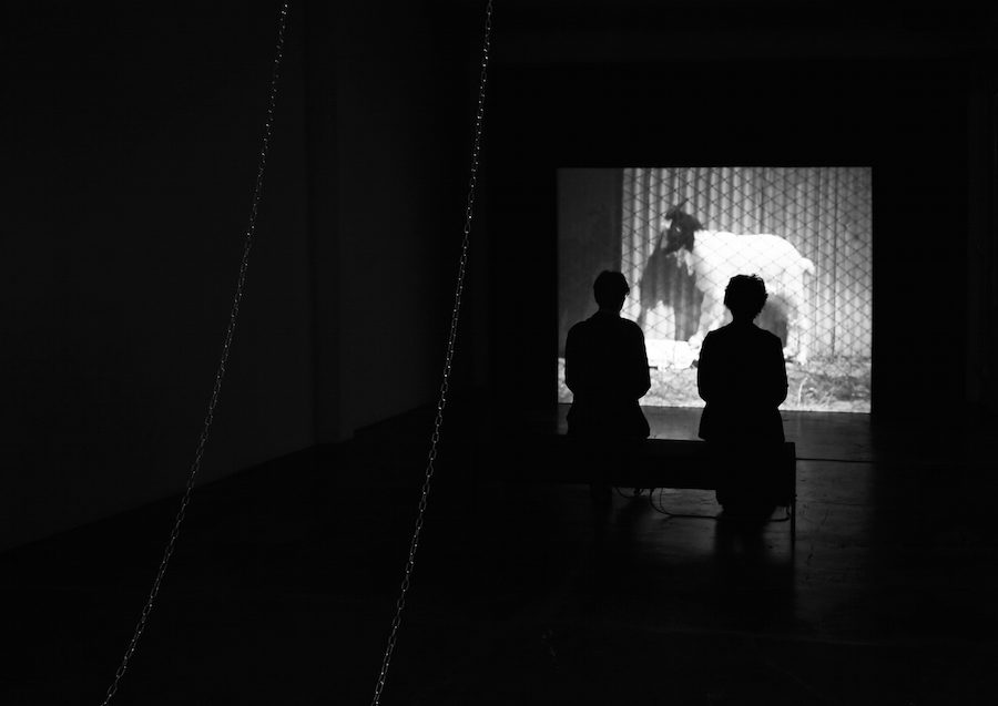 PINO PIPOLI,   MOSTRO INSTALLATION VIEW AT MARSÈLLERIA,   VIDEO INSTALLATION: I'M NOT WELL ANYWHERE,   2010.