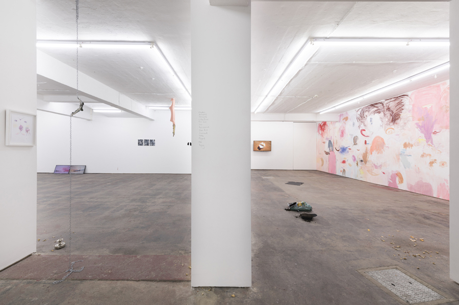 Basic Instinct - Installation view ,   courtesy Seventeen Gallery London,   2015