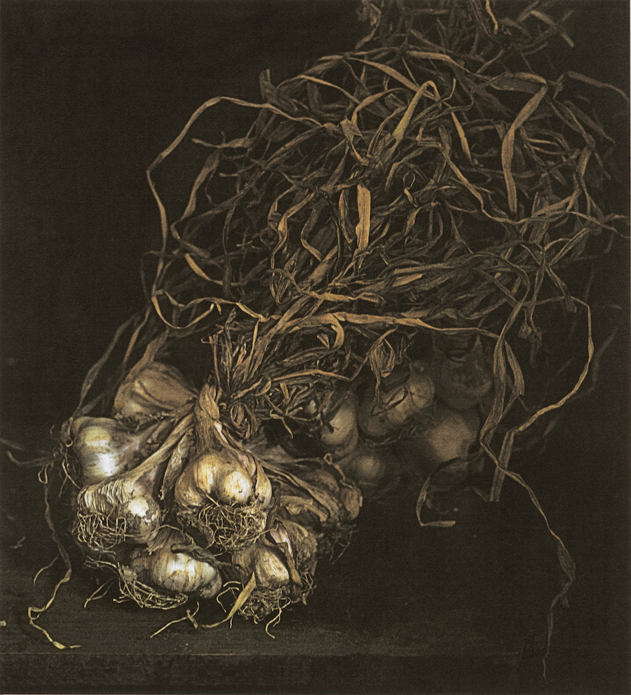 Craigie Horsfield, Garlic, 2015, dry print on Arches paper, cm 40 x 36, cm 66,5 x 53,5 framed, unique print, Courtesy of Monica De Cardenas
