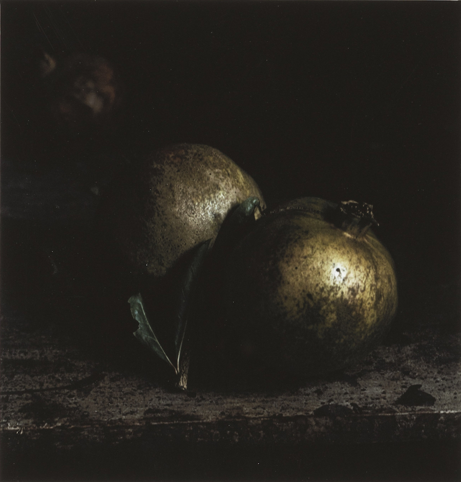 Craigie Horsfield,   Two Pomegranates,   2015,   dry print on Arches paper,   cm 30,  5 x 29,  5,   cm 66,  5 x 53,  5 framed,   unique print,   Courtesy of Monica De Cardenas