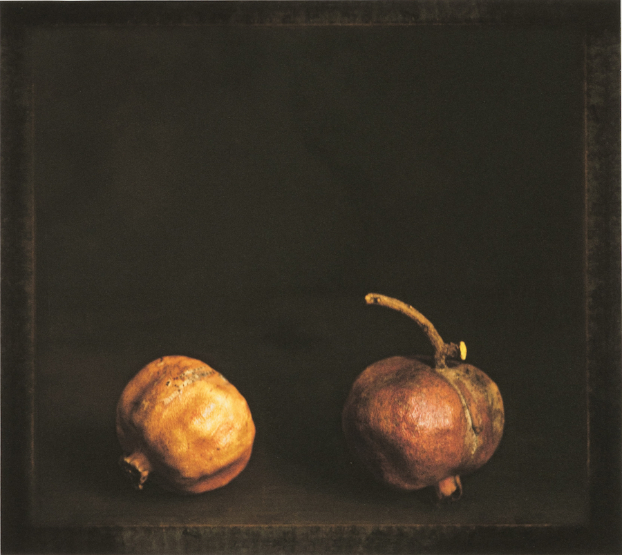 Craigie Horsfield,   Two pomegranates. Via Chiatamone,   Naples. April 2009,   2015,   dry print on Arches paper,   cm 33,  5 x 37,  5,   cm 66,  5 x 53,  5 framed,   unique print,   Courtesy of Monica De Cardenas