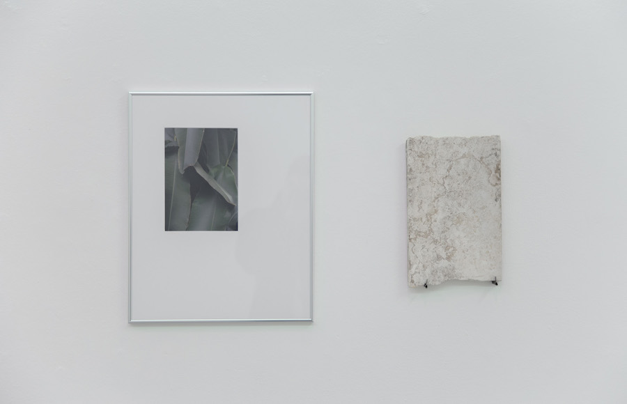 Matteo Cremonesi,   Appartamento,   Nowhere Gallery,   Milano -  Installation view