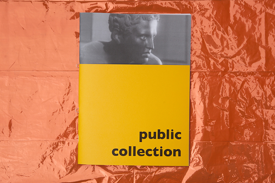 PUBLIC COLLECTION an artist's book by A&SP and NASTYNASTY©