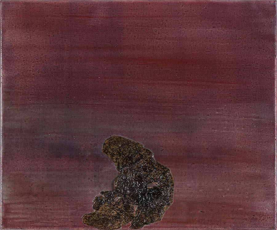 Jakub Czyszczon?,   Untitled,   2016,   paint,   warnish,   plant fragment,   50 x 60 cm