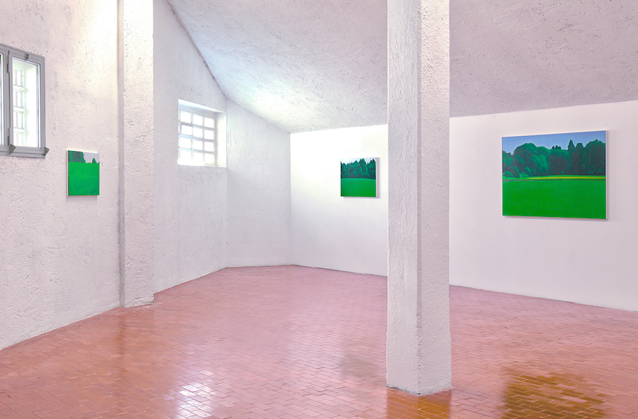 Valentina  D'Amaro,   VIRIDIS,   Variazioni in verde,   Yellow Space,   Varese,   Installation view