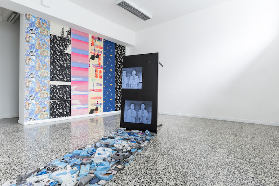 Ludovica Gioscia, The Peacock Stage - t-space, Milano - Installation View