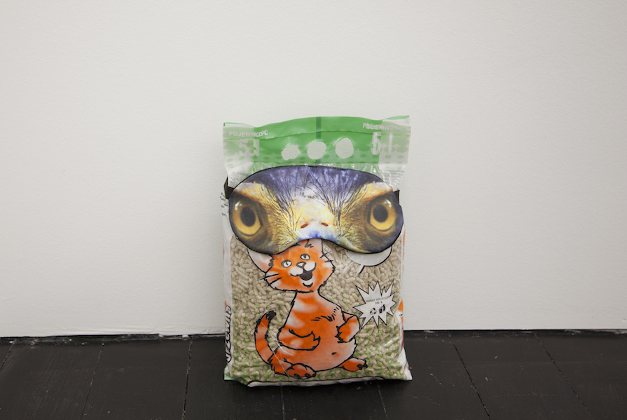 Hannah James, Head (Peacock) 2017 Cat litter in packaging, eye mask - courtesy the artist/s e ChertLüdde, Berlin
