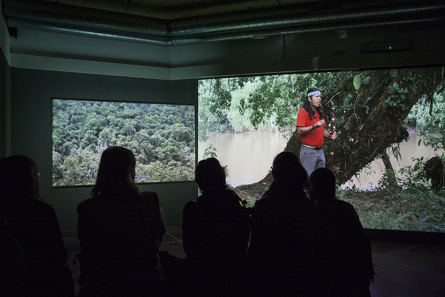Ursula Biemann, Forest Law, 2014, Video sincronizzato in doppio canale, 38', Courtesy dell'artista