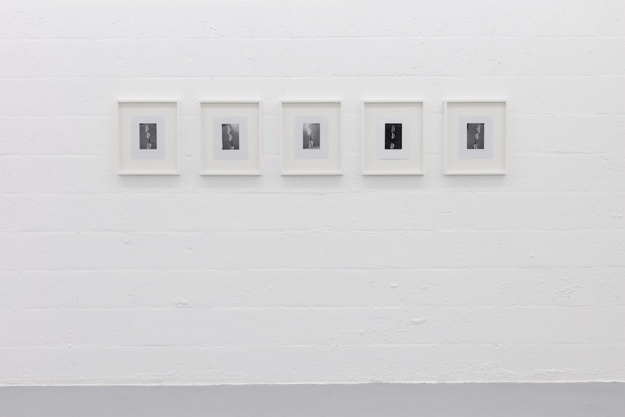 Installation View, Megan Plunkett, I Bet You Wish You Did and I know I do, 2017 -  Courtesy of The artist and Emalin, London – Photography Lewis Ronald