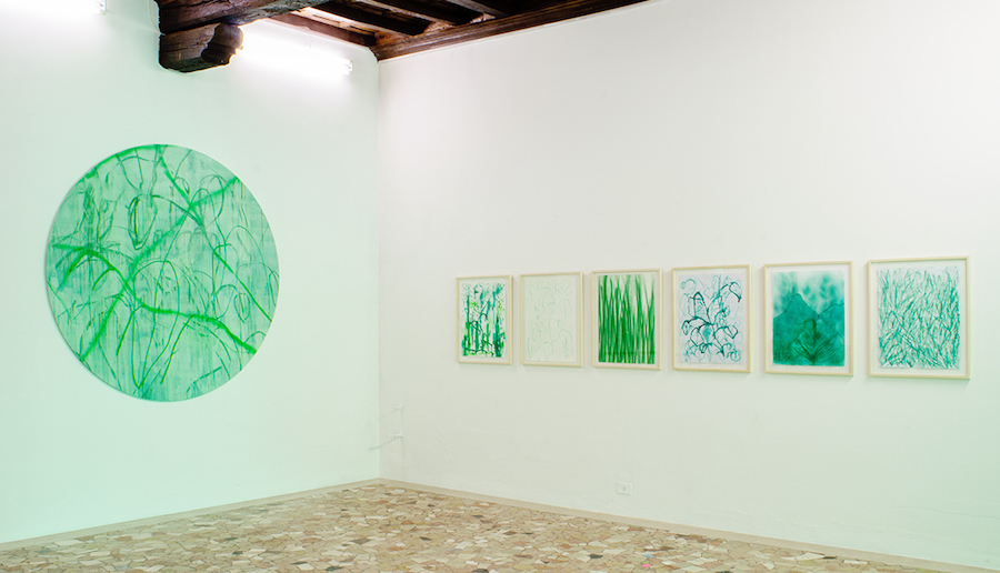 Thomas Berra, Verde Indagine, installation view - Photo credits Marco Fava - Courtesy Placentia Arte e l'artista