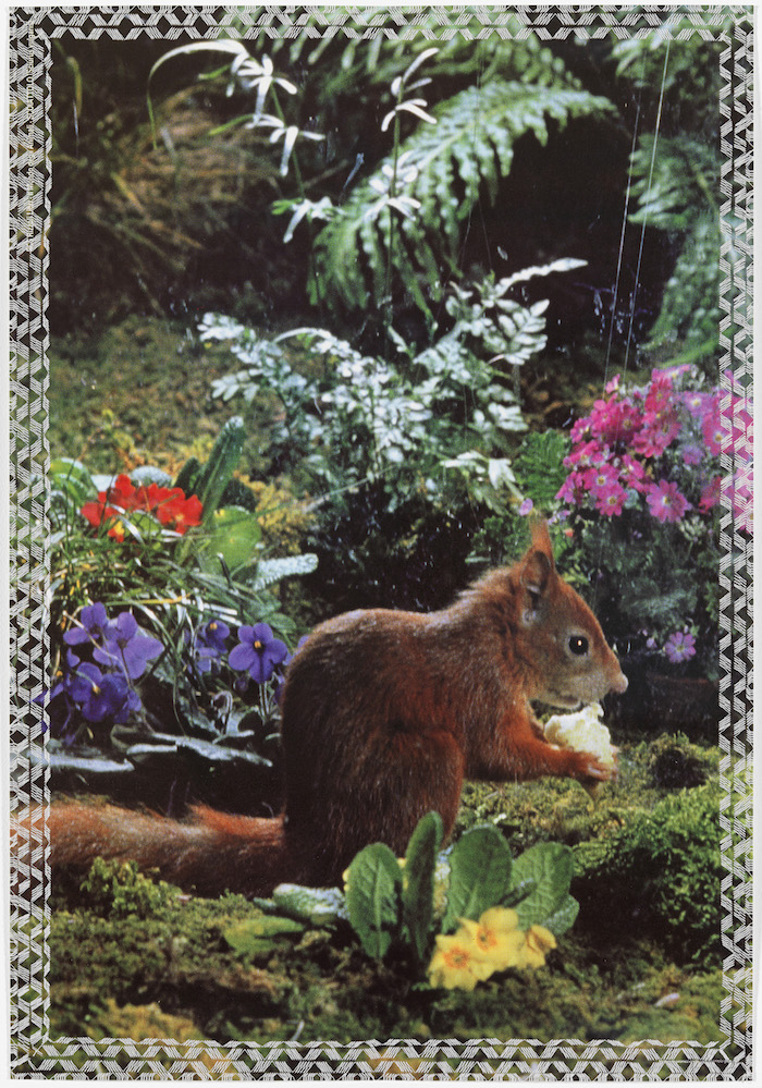 Stefano Arienti - Squirrel 2010 thread on poster - 68 × 47 cm  - Courtesy Greengrassi, Londra