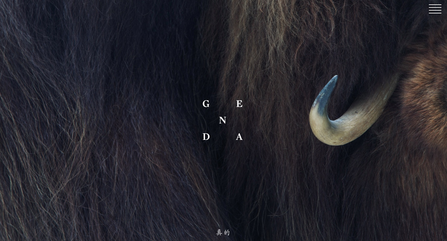 GENDA Magazine #2 | Animals as permanent followers