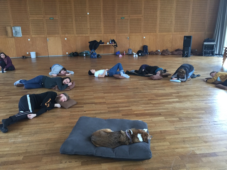 Kroot Juurak and Alex Bailey, Sleeping Workshop Led by a Dog