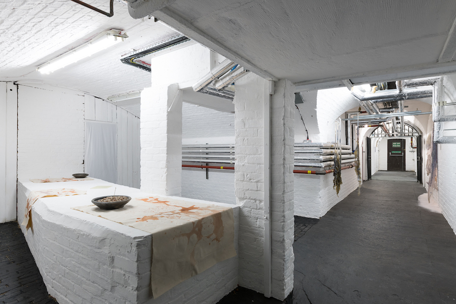 Exhibition view, Hannah Lees and Miriam Austin - Photography by Damian Grif ths, Courtesy of WHITE CRYPT