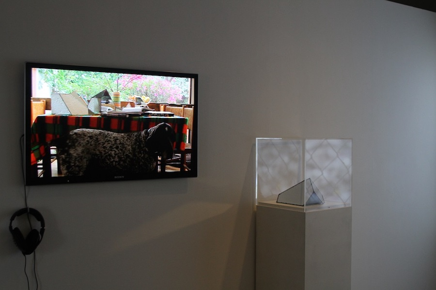 Installation view - Photo credit Alfredo Hubard