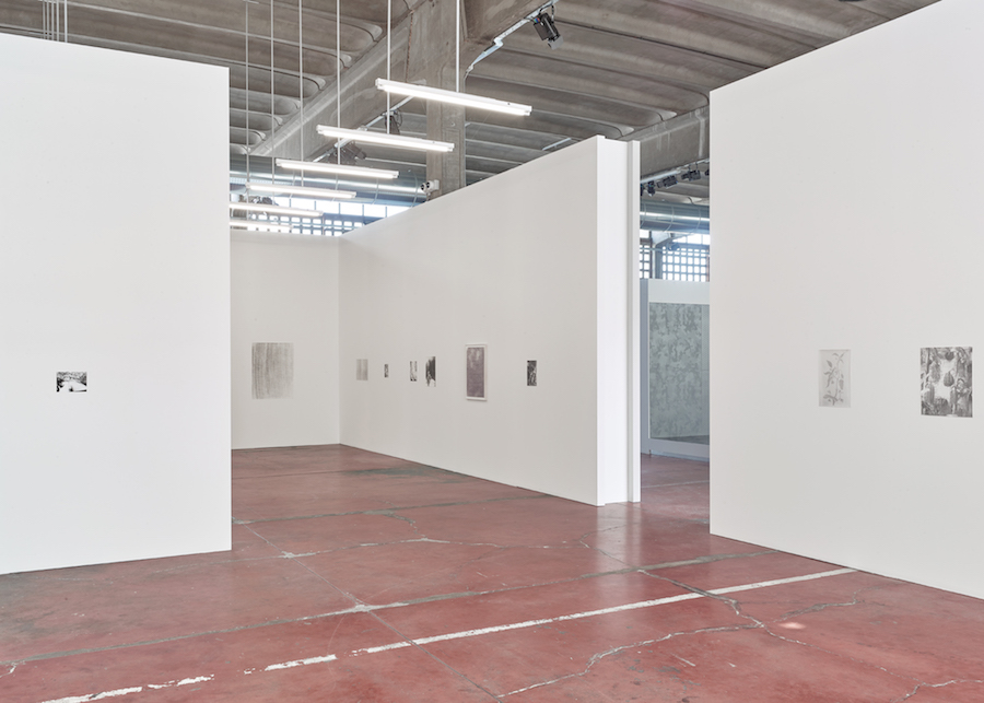 Jochen Lempert, Two Poems, Some Pairs, Mut 2018, Installation View_02