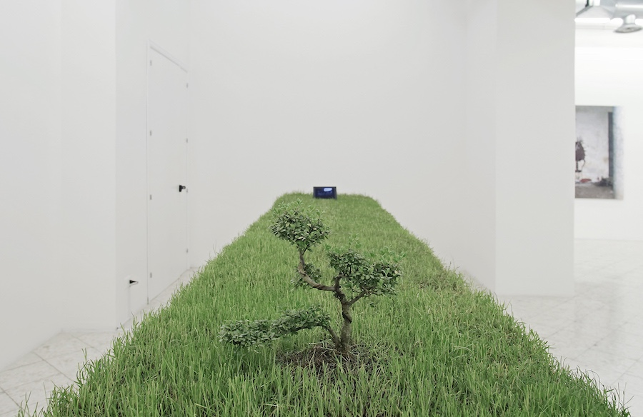 Garden by Carlos Garaicoa courtesy the Artist and Francesco Pantaleone gallery - Foto Fausto Brigantino