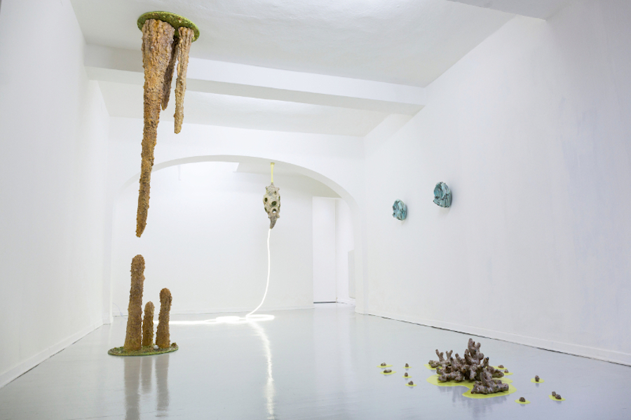 Francesco Pacelli - Ballata Vogelkop - Installation view -  Display, Parma
