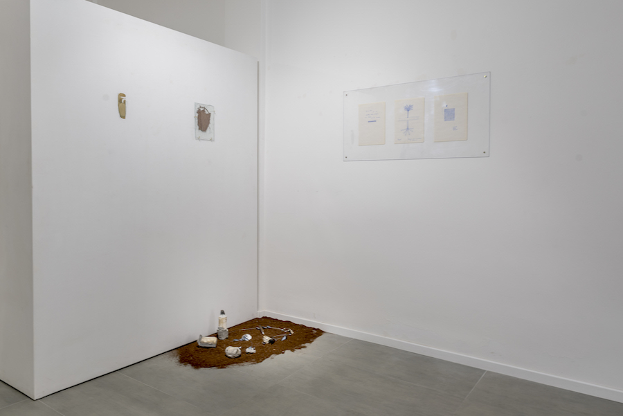 Aurora Paolillo, Polarità 2019 installation view (1)