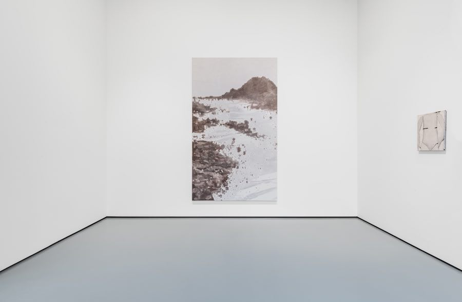 (from left to right) Luc Tuymans, Mountains, 2016, Pinault Collection, Body, 1990, Collection S.M.A.K. Stedelijk Museum voor Actuele Kunst, Ghent. Installation View at Palazzo Grassi, 2019 © Palazzo Grassi, Photography by Delfino Sisto Legnani e Marco Cappelletti.