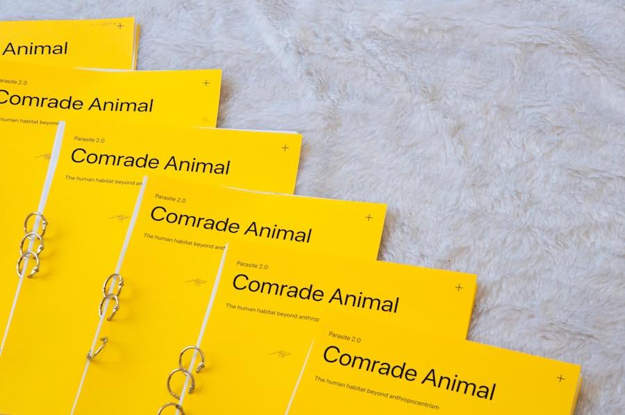 Parasite 2.0 - COMRADE ANIMAL - LucaMassaro & Palazzi